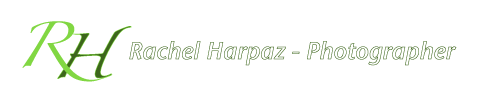 Rachel Harpaz – Photographer